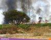Tebu Siap Panen Seluas 4 Hektar di Jakenan Terbakar, Kerugian Ditaksir 60 Juta