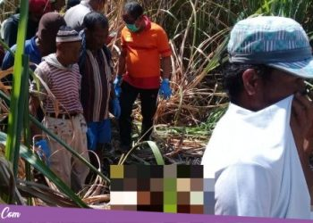Tak Pulang Dua Bulan, Warga Selempung Dukuhseti Ditemukan Meninggal di Lahan Tebu